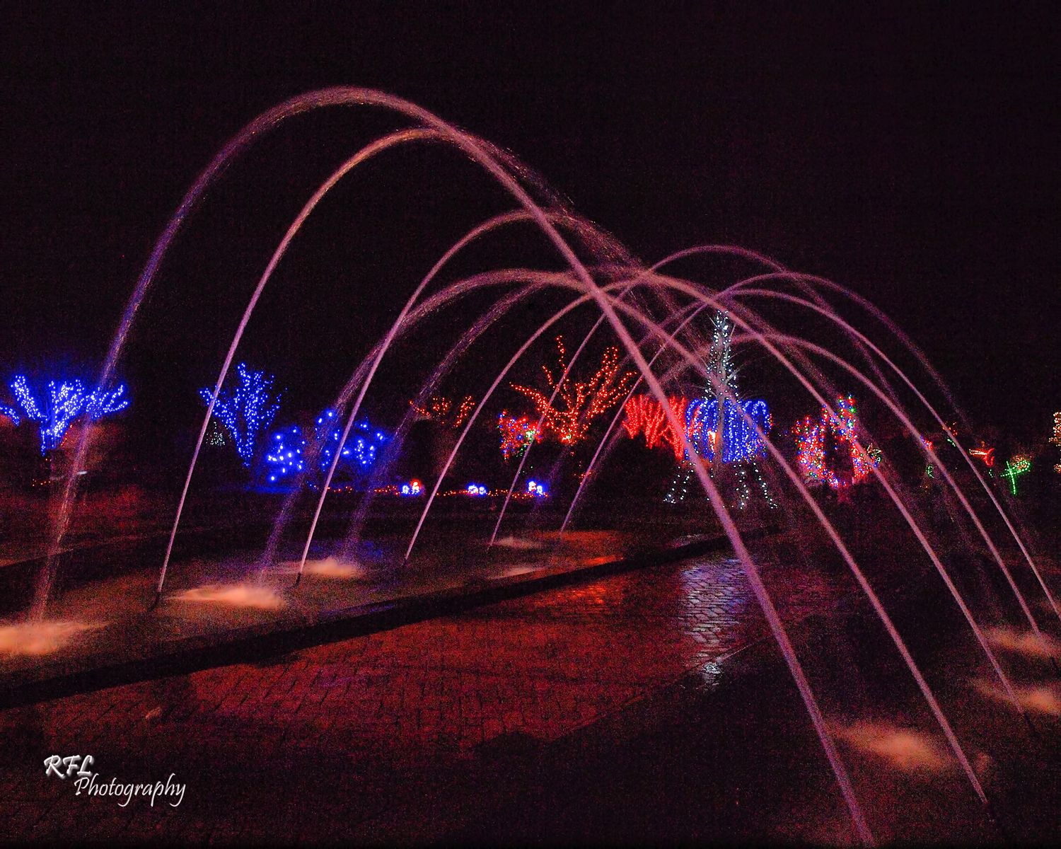 Daniel Stowe Botanical Gardens. The Tunnel Fountain during Holiday ...