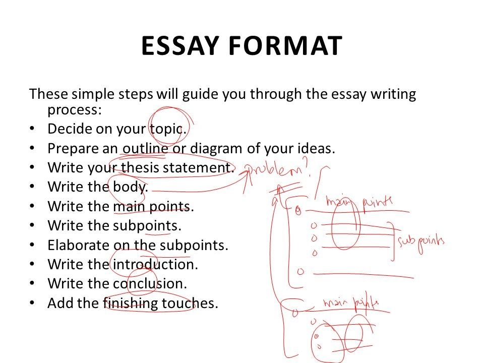Essay writer login