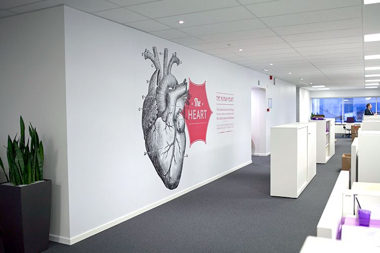 Wall graphics for Arseus Medical by Soon Retail Environments