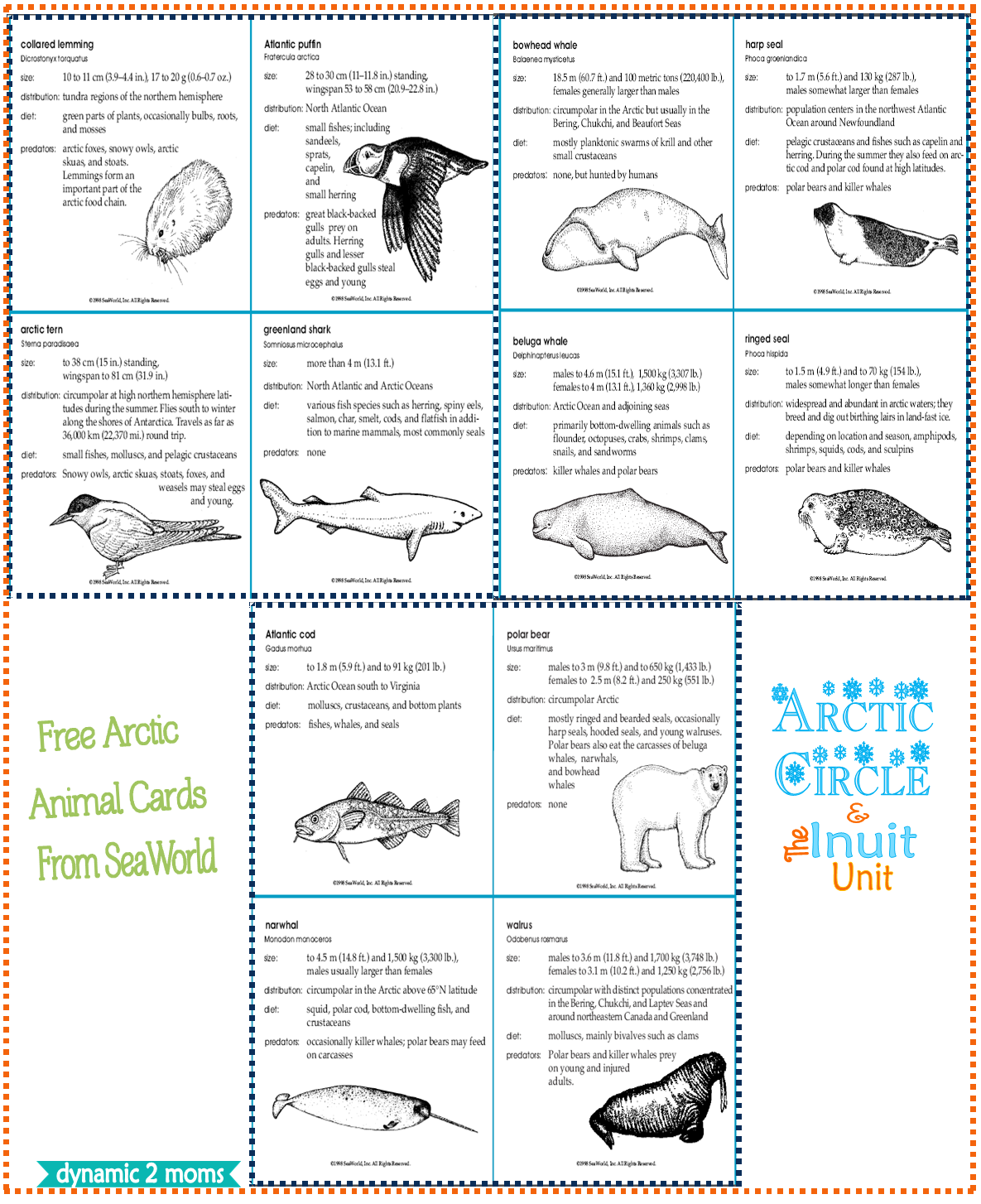 Arctic Unit Free Guides Amp Resources Free Unit Study