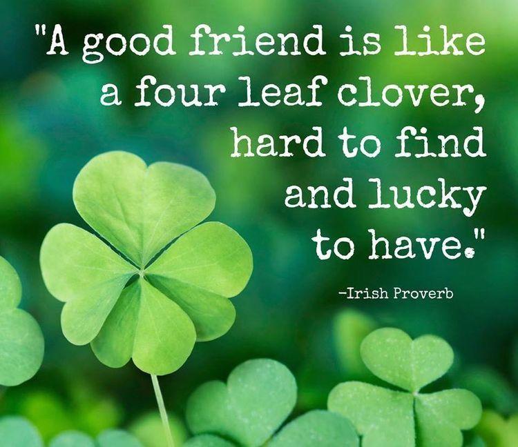 Charmant Friendship
