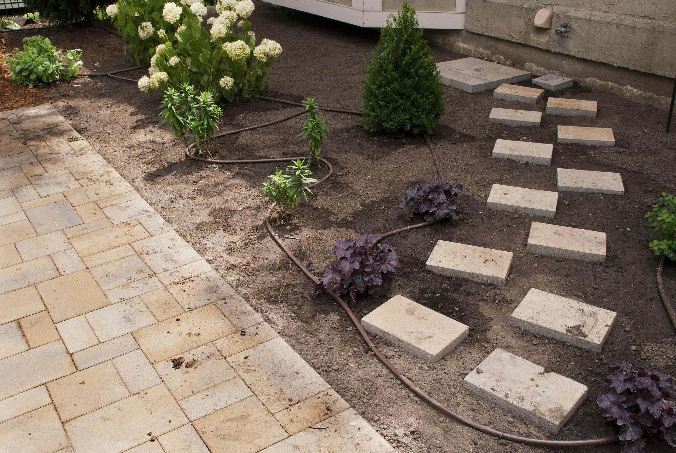 landscaping a yard with poor drainage yard with poor drainage is