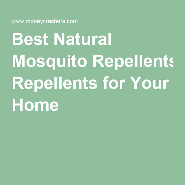 Best Natural Mosquito Repellents for Your Home