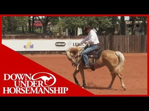 76654f87a9 Clinton Anderson: Training a Rescue Horse, Part 12 - Downunder Horsemanship  - YouTube
