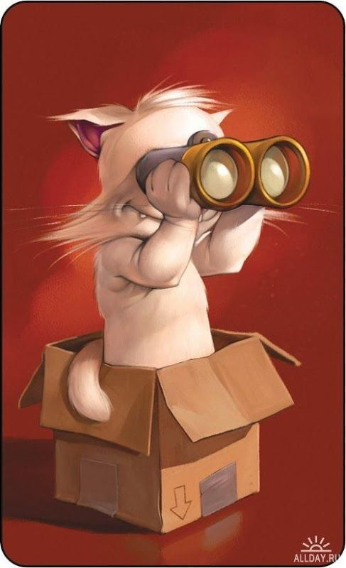 Caricaturas De Dibujos Animados Soyunalbondiga Funny Cartoon Memes Cartoons Real Life Funny Cartoons