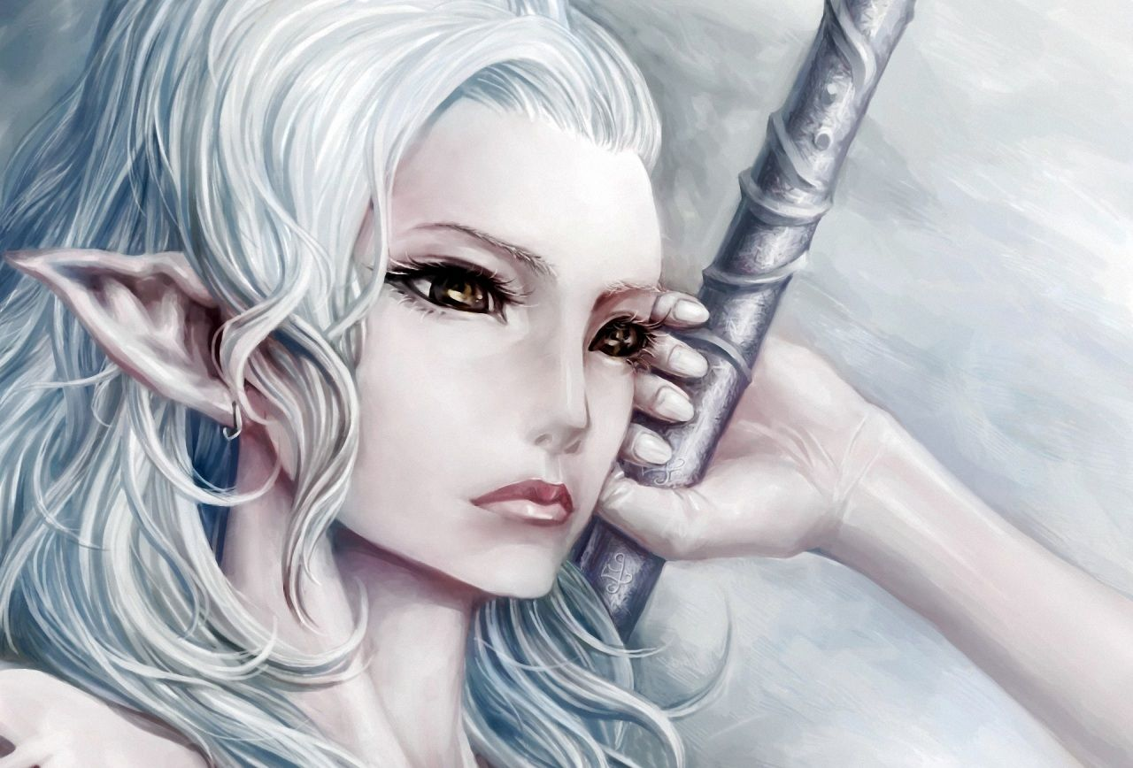 Anime Elfen Krieger