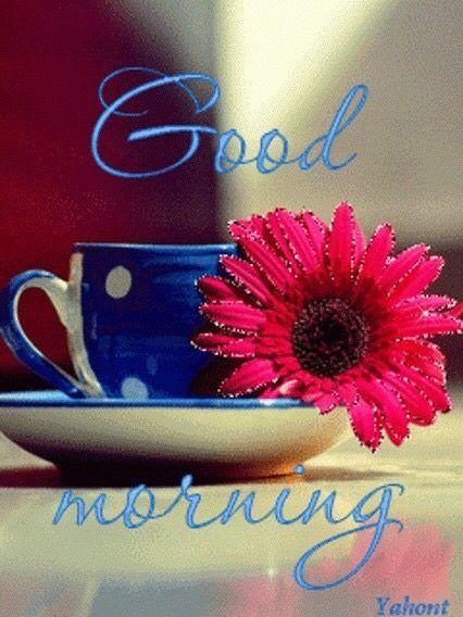 Good Morning Quotes Quote Morning Good Morning Morning Quotes Good Morning Quotes Good Morning Gif Good Morning Images Hd Good Morning My Love