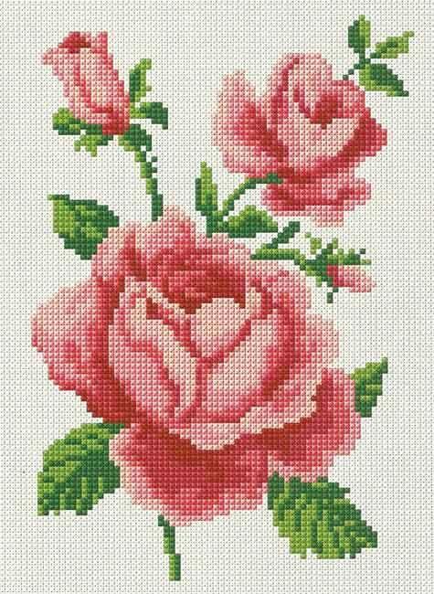 Gráfico de rosas em ponto cruz para toalhas   Rosas, Puntos y Punto ...