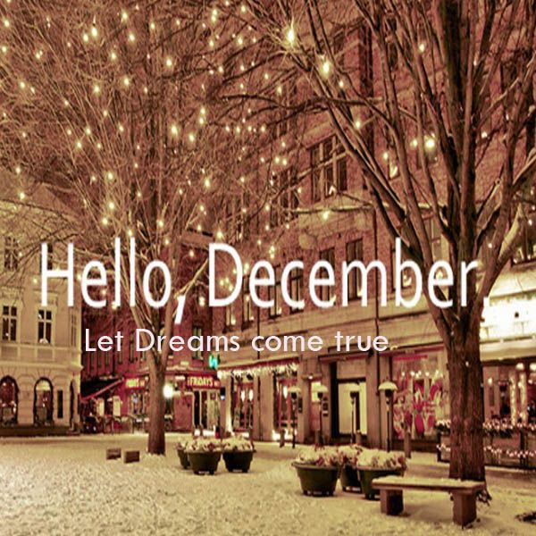 Make My Dreams Come True This Year Hello December Christmas Lights Winter