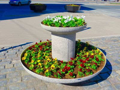 Just planted flowers in the market square of Vaasa, Finland