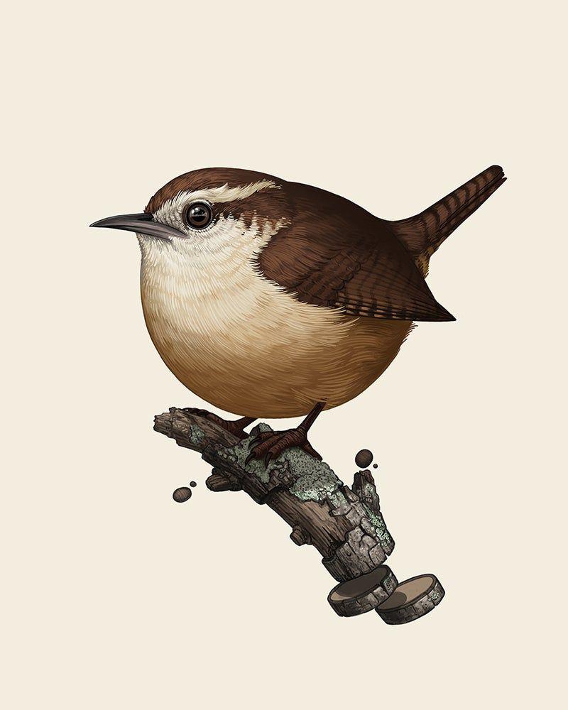 Pin On Birds Birdhouses