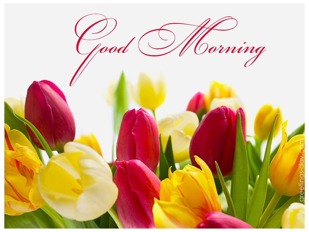 Good Morning Sunday Messages : Goodmorning http greetings day good morning best