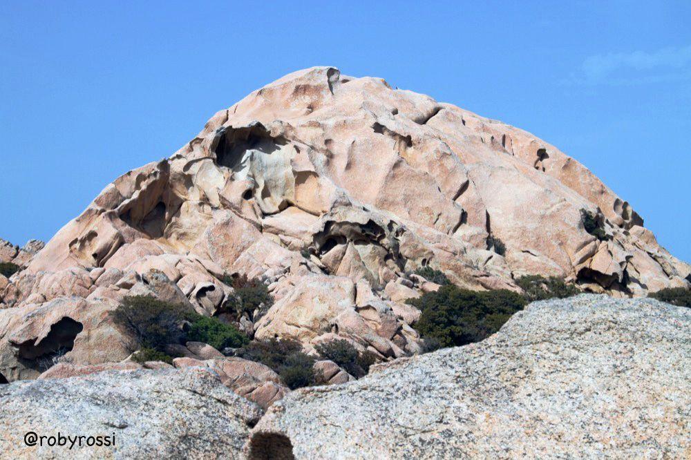 dune fisse... Cala Coticcio, Isola di Caprera - Gallura