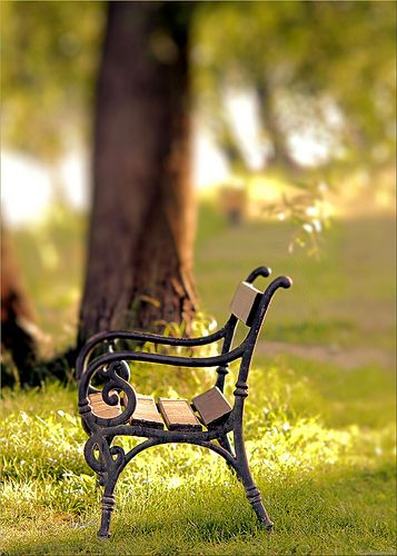 """park bench  This reminds me of a part out of the film 'finding neverland' where J.M.Barrie (johnny depp) was sitting with peter llewlyn davies (Freddie highmore) and Johnny says """" Just believe"""""""