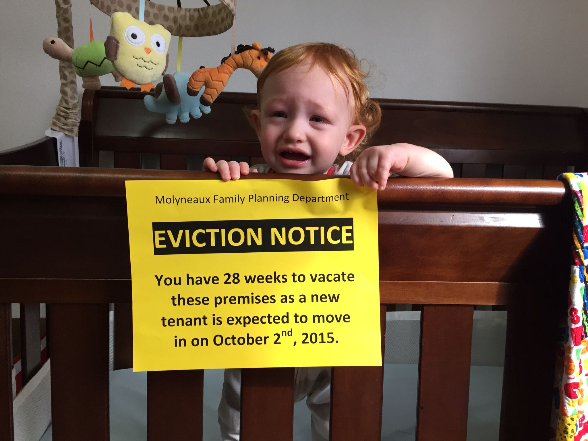 Baby Announcement Eviction Notice Lol  Hilarious
