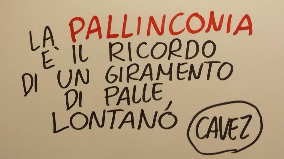 Pallinconia