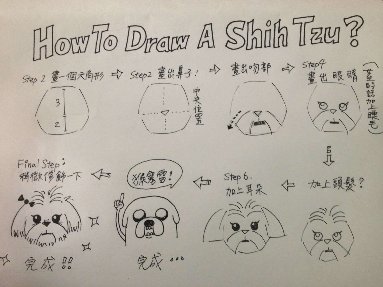 How To Draw A Shih Tzu Sketch Book Animal Doodles Doodle
