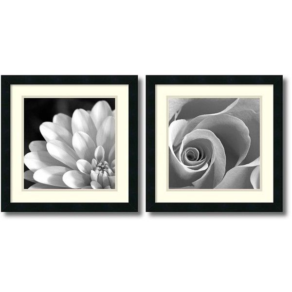 2 pc pretty petals framed wall art set rose white black 245 ❤ liked on polyvore featuring home home decor wall art framed wall art black wall art