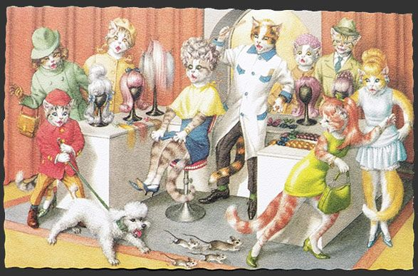 Alfred Mainzer Dressed Cats Postcard ~ Cats At The Wig Shop