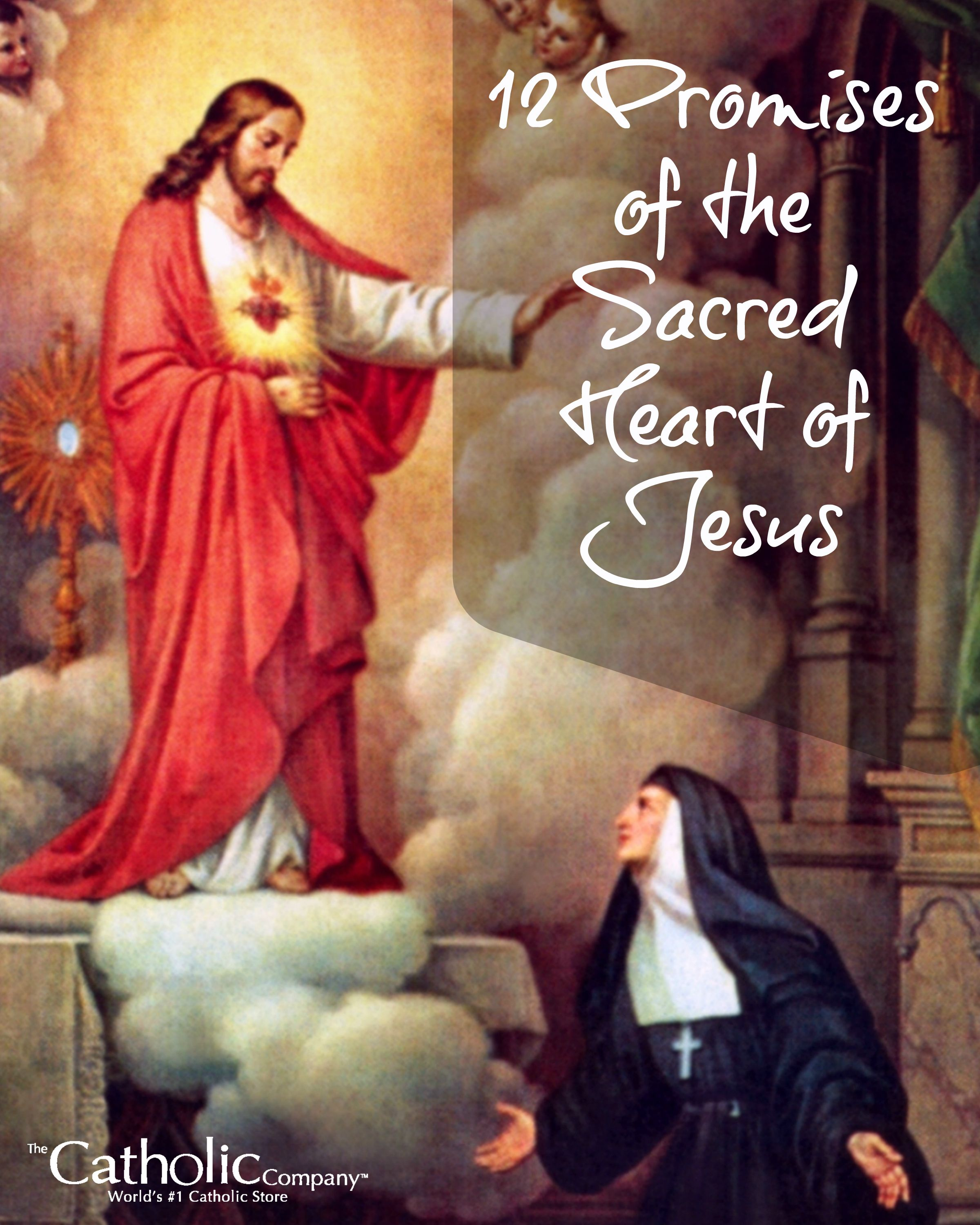 The Sacred Circle Of Water: The 12 Promises Of The Sacred Heart Of Jesus