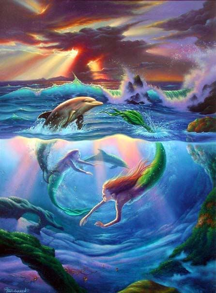 mermaid dolphin circle Pictures, Images and Photos