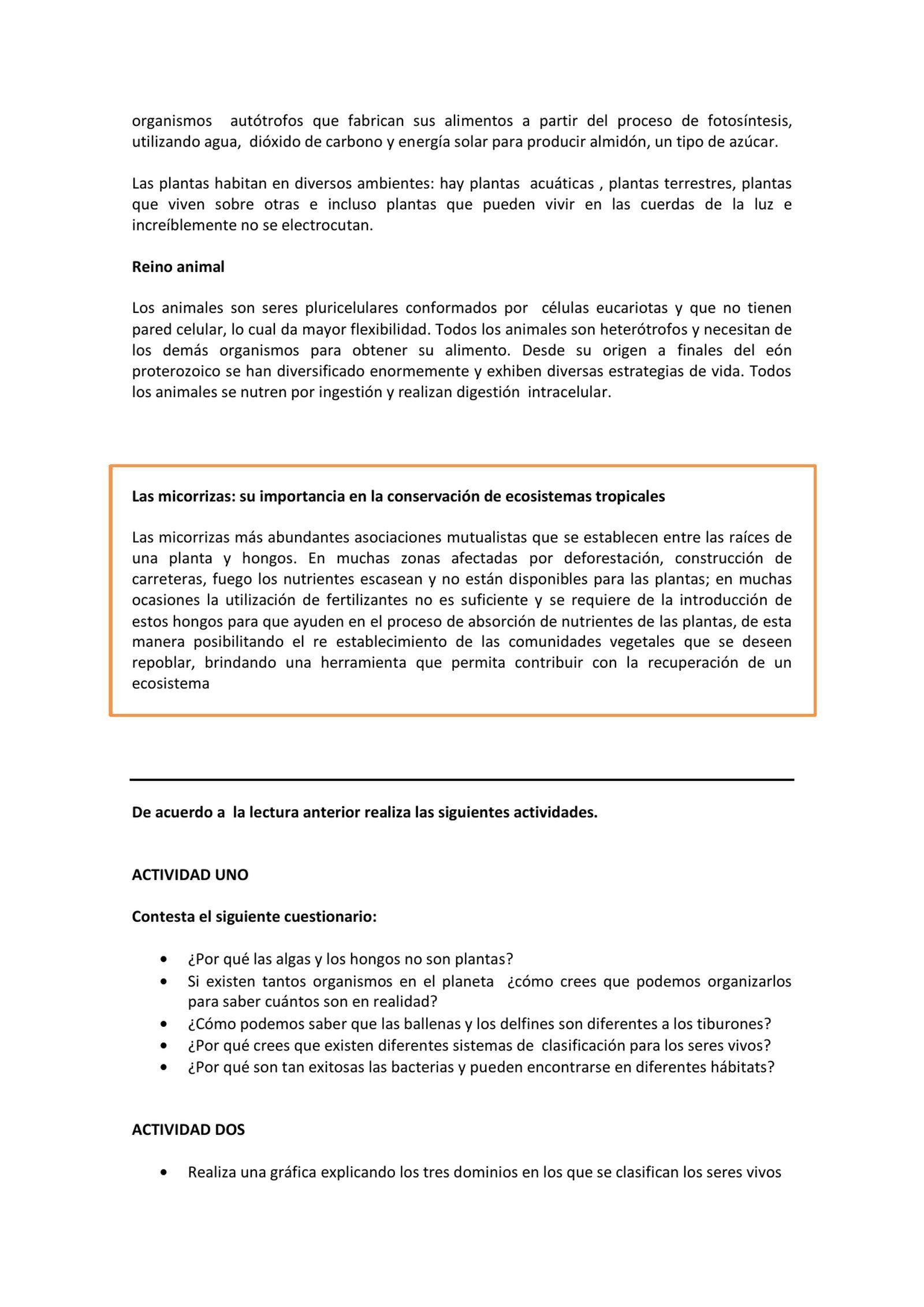 Taller Uno Taxonomía Y Sistemática Grado 9º Pte Amarillo Pdf Flipbook Taxonomia Fotosintesis Grado