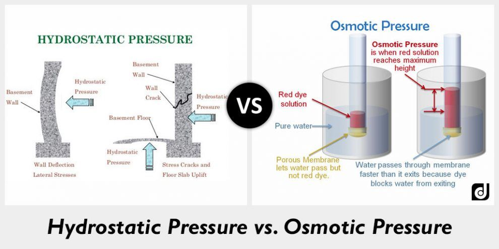 What Is The Cause Of Hydrostatic Pressure High Performance In 2020 Osmotic Pressure How To Relieve Stress Pressure