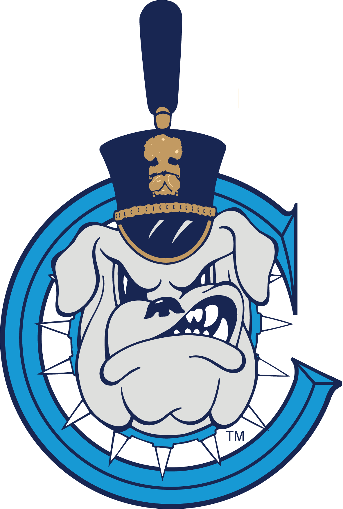 Image result for Citadel Bulldogs
