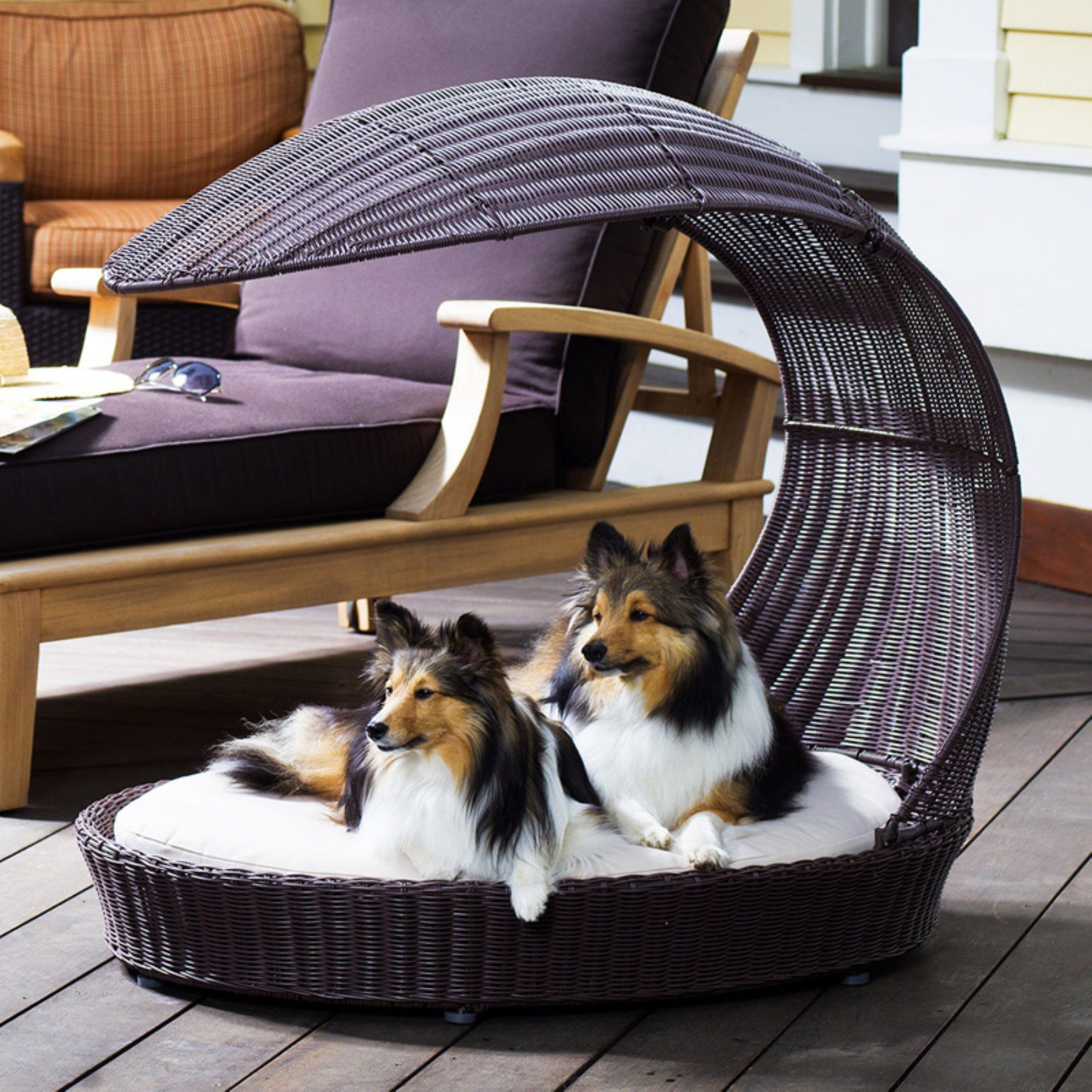 Refined Canine Outdoor Dog Chaise Lounger Stylish Dog Beds