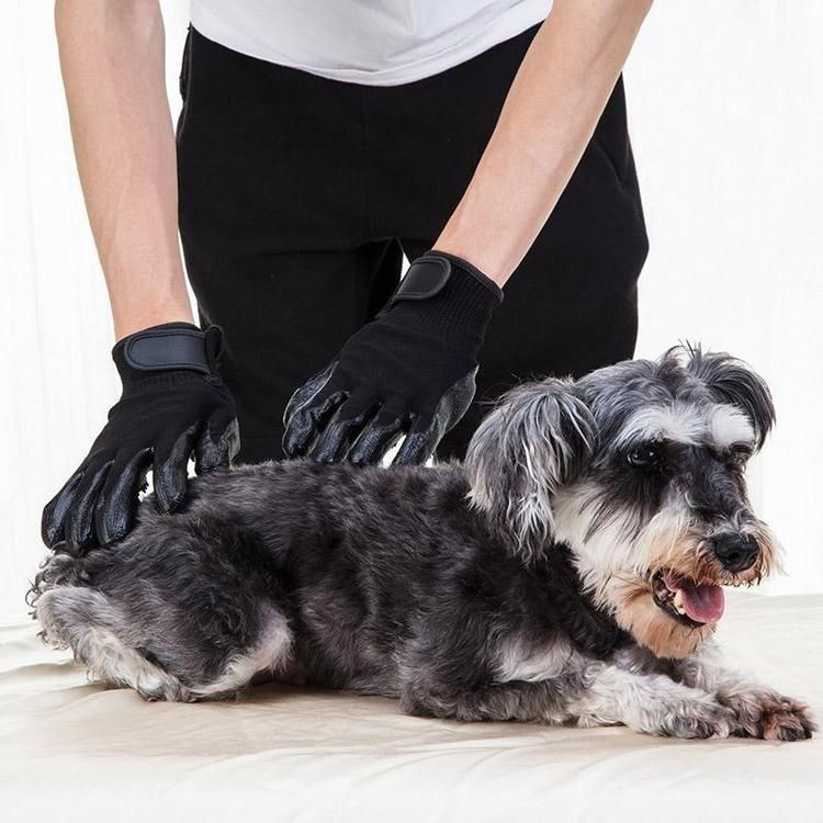 Pet Grooming Gloves Pet grooming, Grooming, Pets