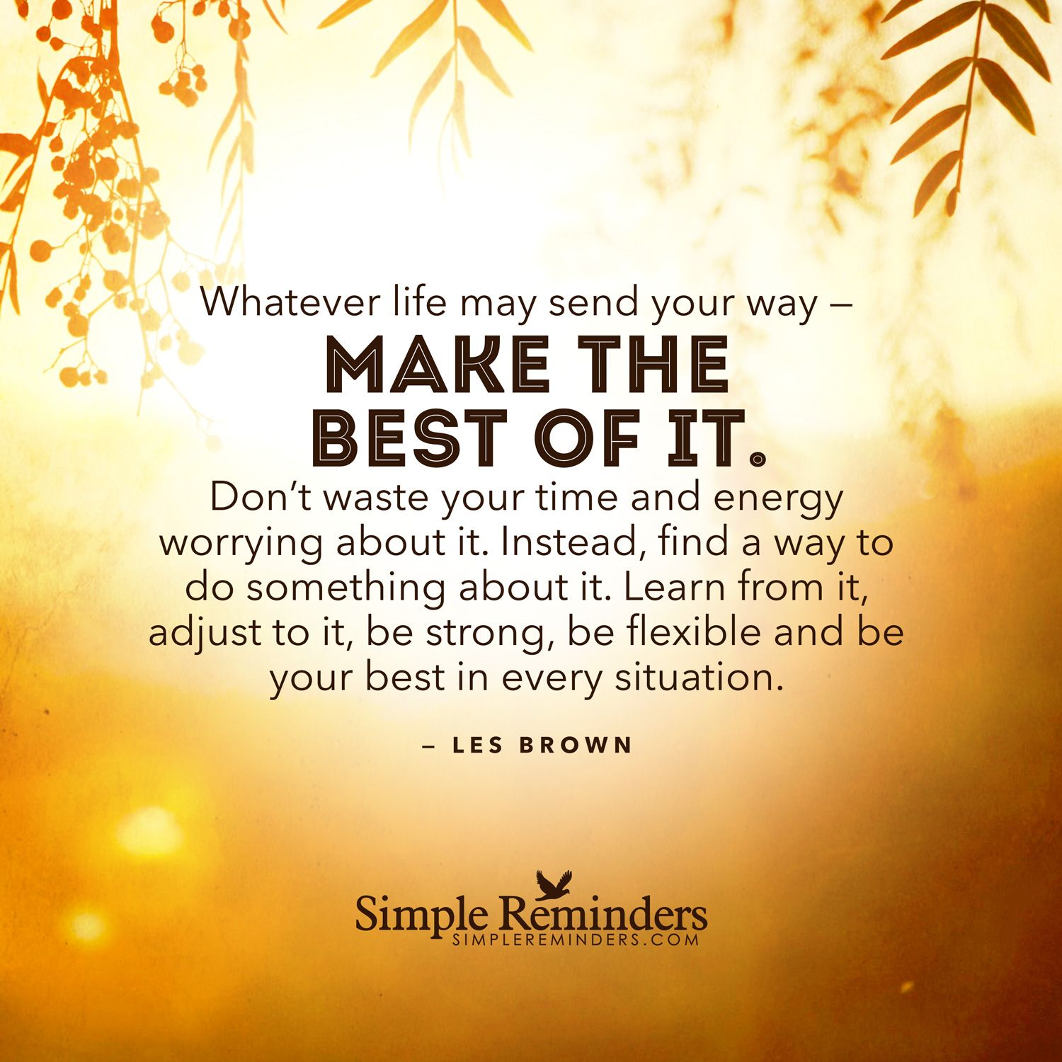 Whatever life may send your way — make the best of it. Don't waste your time and energy worrying about it. Instead, find a way to do something about it. Learn from it, adjust to it, be strong, be flexible and be your best in every situation. — Les Brown