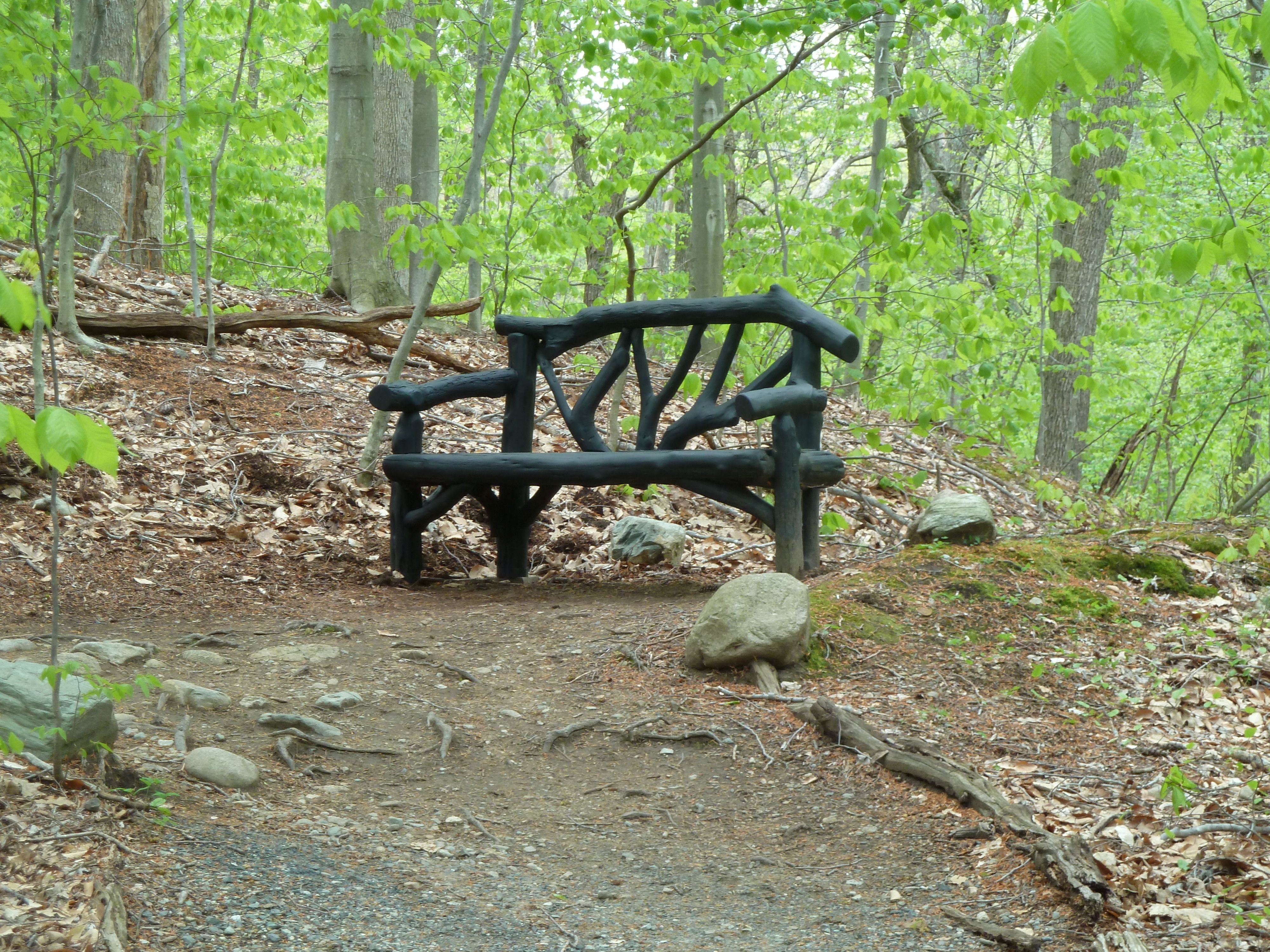Garden In The Woods Framingham Massachusetts Garden In The