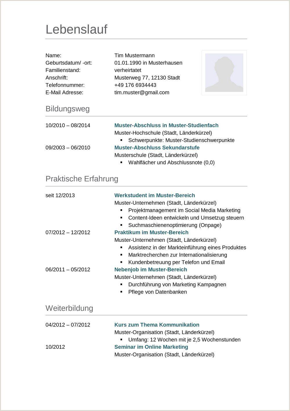 Lebenslauf Muster Schuler Schweiz In 2020 Resume Words Resume Template Free Resume Template