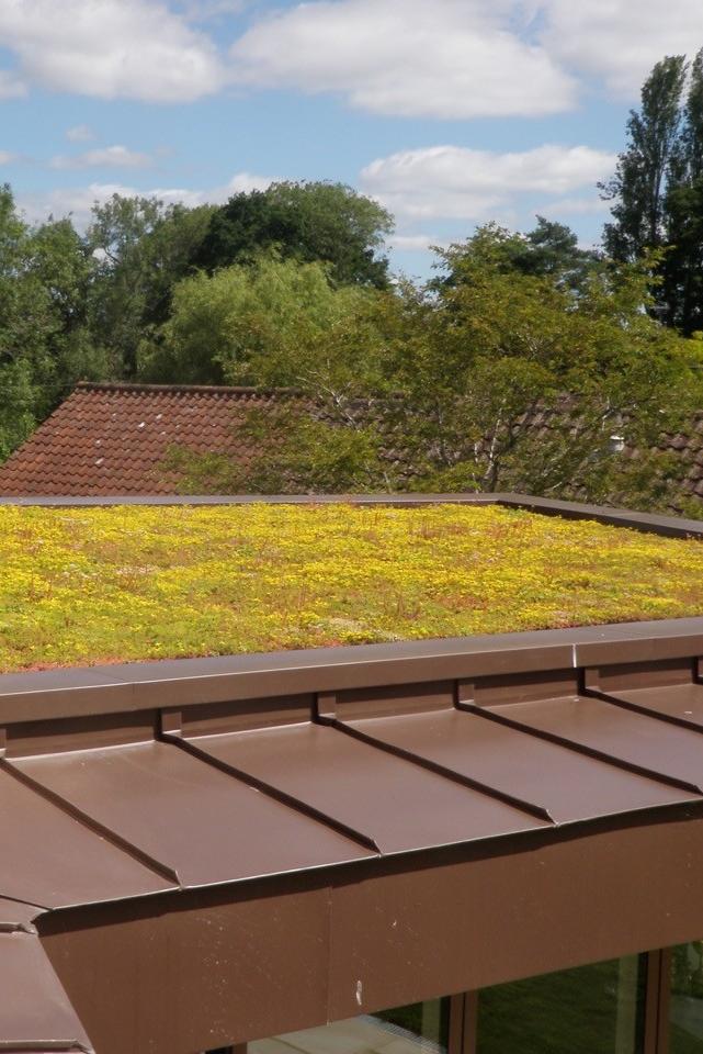Increase Property Value Diy Ans Grufekit Green Roof Greenroof Biodiversity Diy Homedesign Roofdesign Roofi Green Roof Green Roof System Roof Design