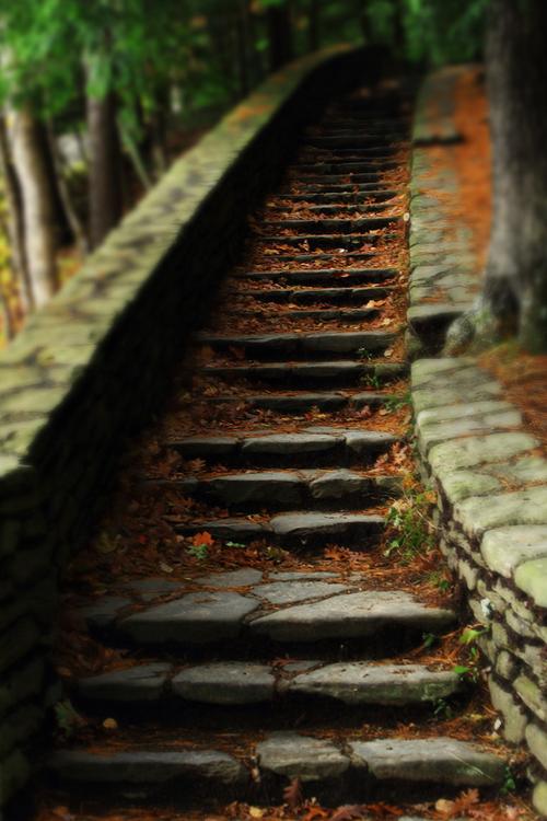 ☝☟escadas - Stairs