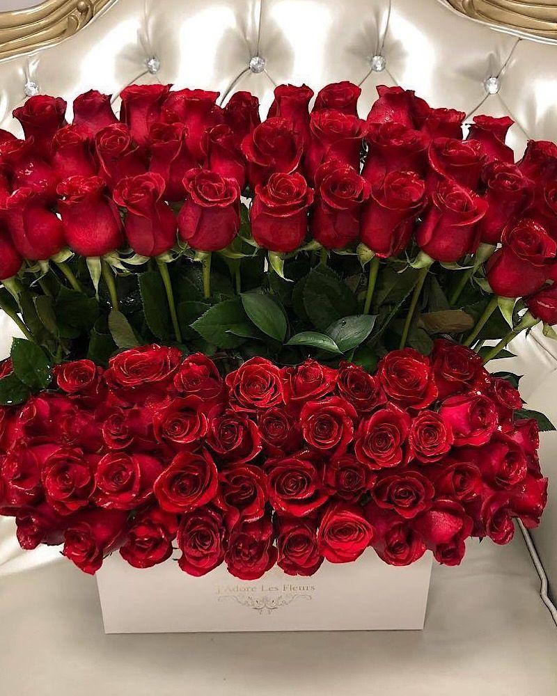 панорамы добрый вечер картинки букет роз можно завязать