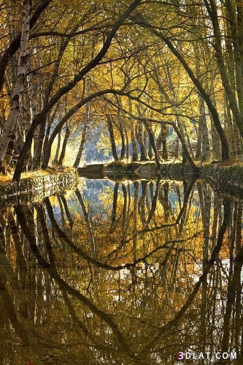 صور طبيعية 2019 صور خريف صور اوراق متساقطة صور طبيعية لفصل الخريف صور جميلة Reflection Photography Nature Photography Reflection Pictures