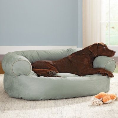 Sofa Dog Bed Grandin Road Dog Sofa Dog Sofa Bed Dog Bed