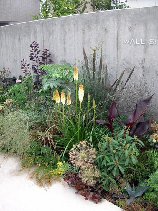 Photo of #medgardeningblogspotca #courtyardgarden #courtyard #indoor #garden
