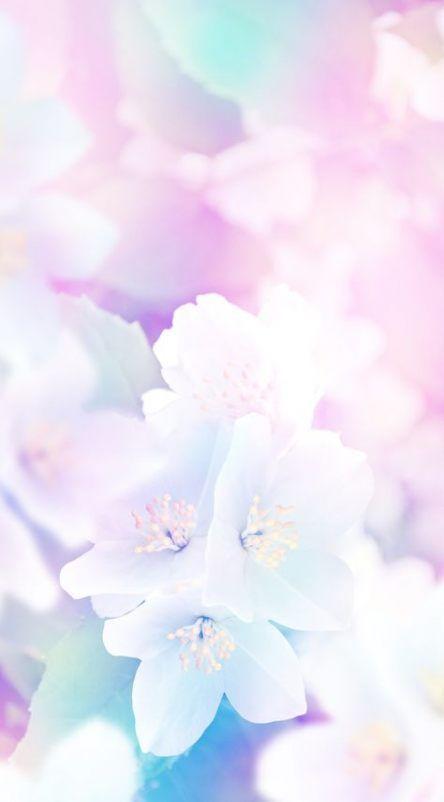 Flowers photography wallpaper pastel 25+ ideas