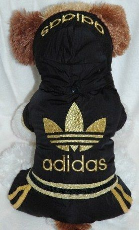 Adidas Black And Gold Dog Track Suit W Removable Hoodie And Pants