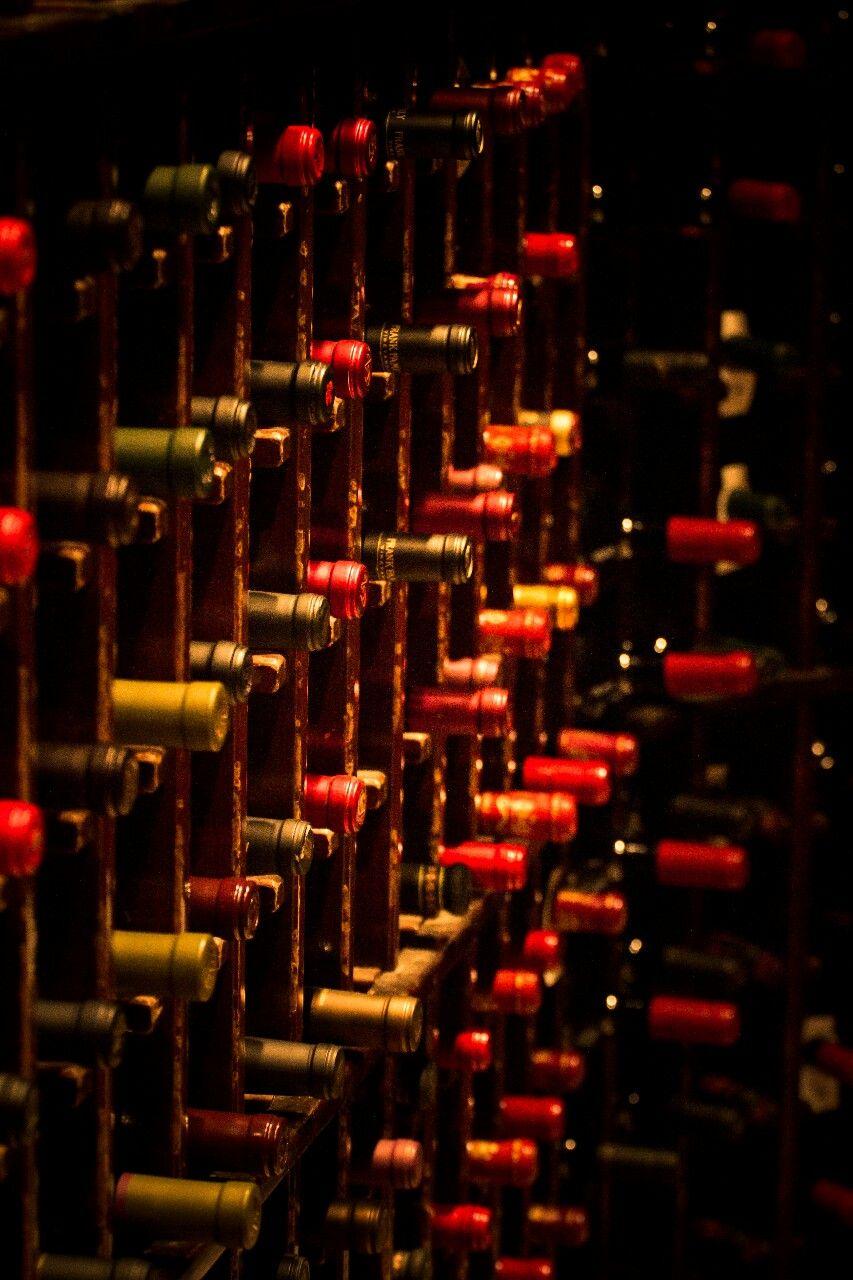 Wineblood Wine Time Wine Wine Logo