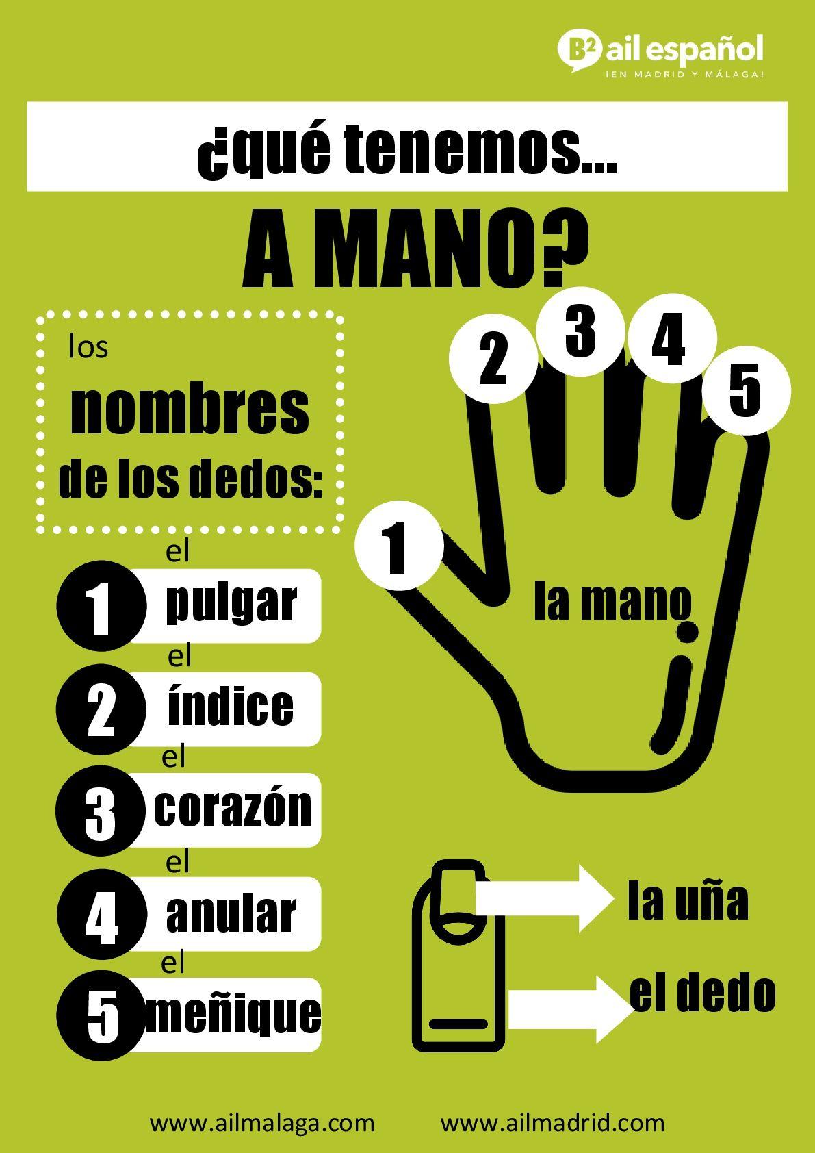Ail Malaga Spanish Language School Intensive Courses Con