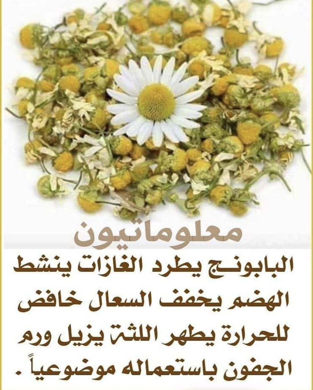 Pin By اوراق الخريف On الصحة والتغذية In 2020 Health And Wellbeing Health Food