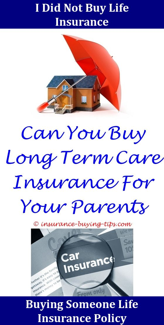 Small Business Insurance Quote Car And Auto Insurance Quotes  Renters Insurance Car Insurance And