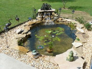 Signature Series Skimmers 200 400 1000 Fish Pond Gardens Pond Water Features Pond Waterfall