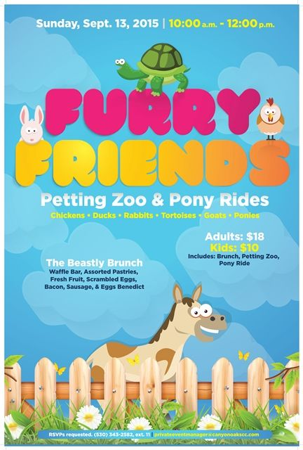 Furry Friends petting zoo pony rides, kids, fun, flyer poster event ...