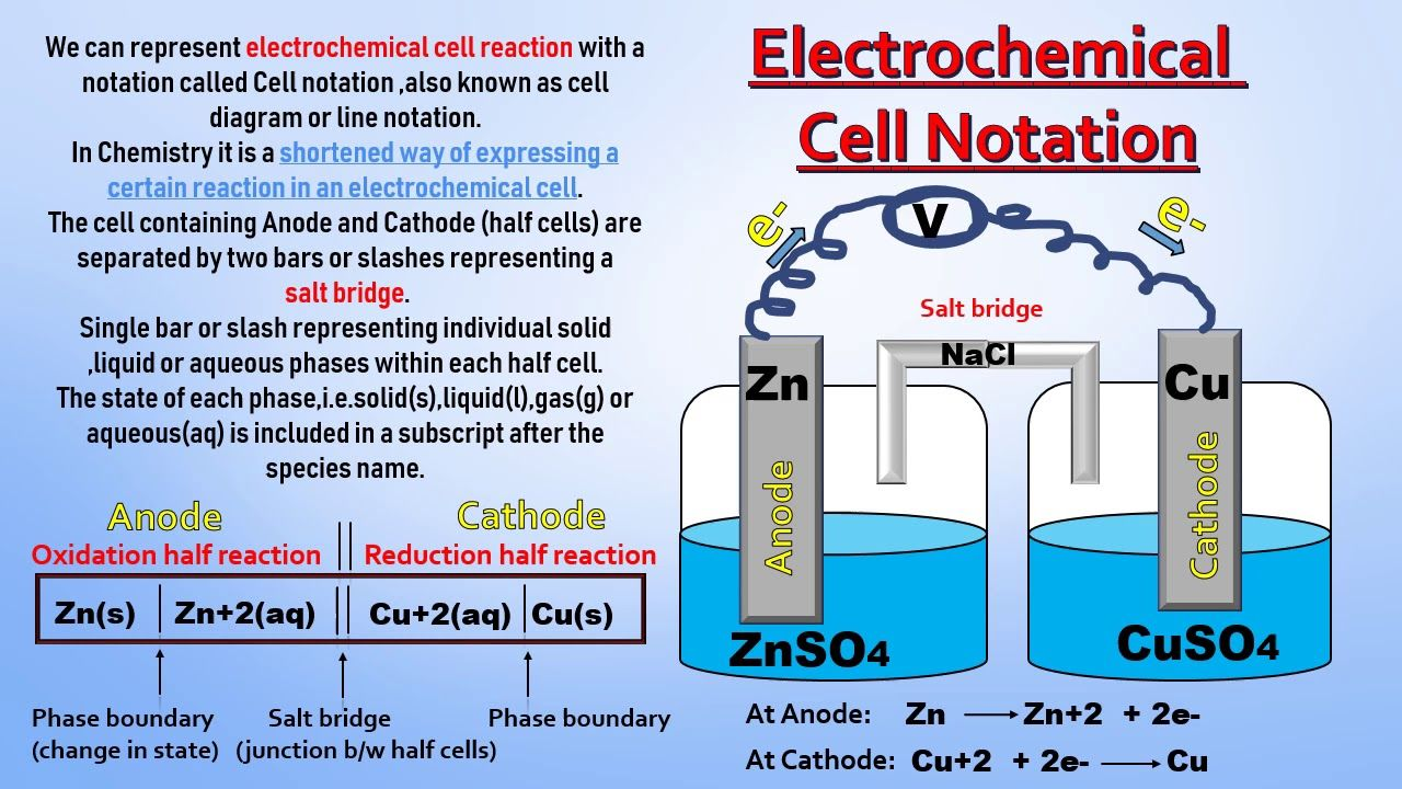What Is Electrochemical Cell Notation Line Notation Cell Diagram In 2020 Electrochemical Cell Cell Diagram Galvanic Cell