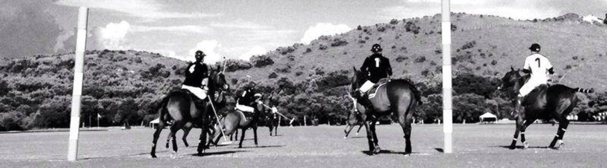 International polo competitions in the Maremma Tuscany
