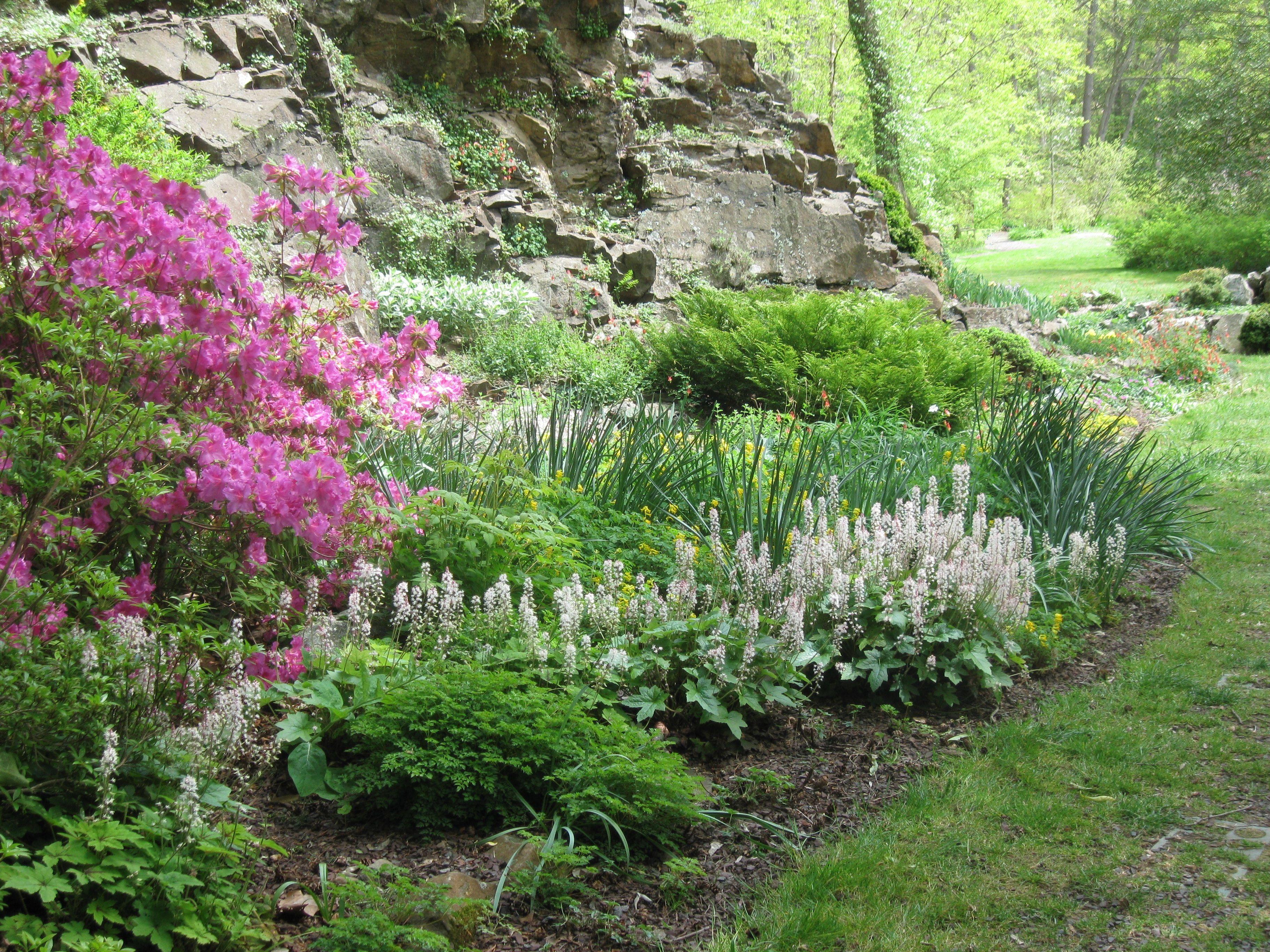 Leonard J Buck Garden Spring 2012 Garden Pinterest